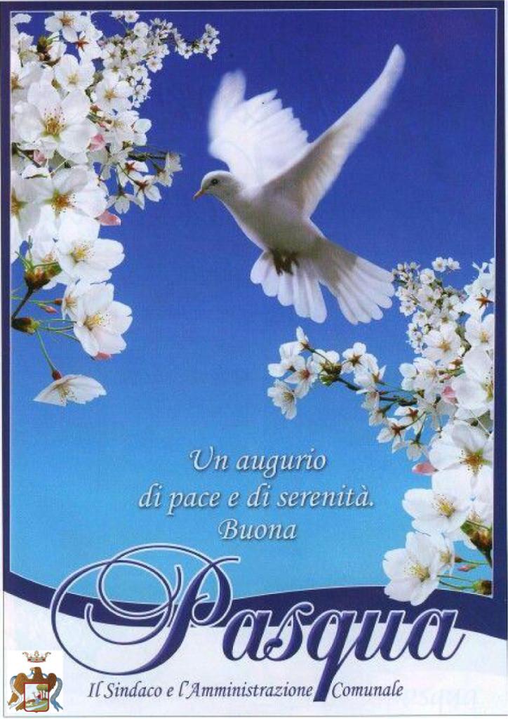 Buona-Pasqua_Guarcino