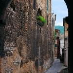 Foto Luigi Benassi